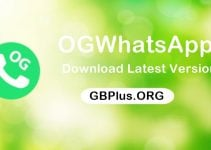OGWhatsApp APK Download V12.0 Latest (Updated) Official Anti-Ban 2021
