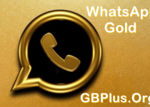 WhatsApp Gold Apk